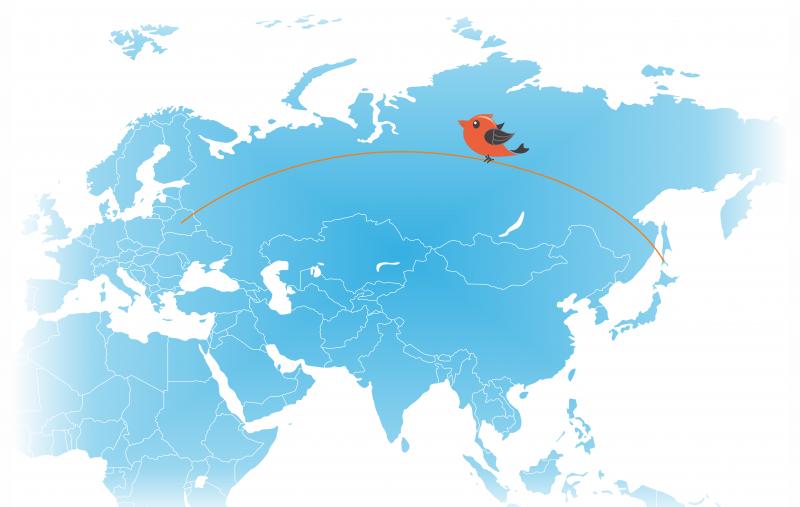 Подключение отелей к системе управления в России и Белоруссии.